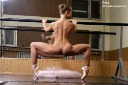Anybody Need A Lesson In Ballet?