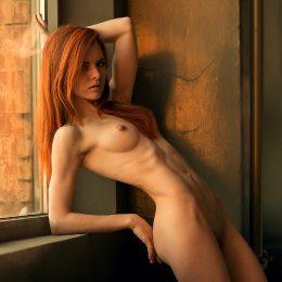 Ginger Dreams